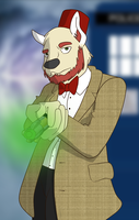 Doctor Who (Raffle Eleventh Doctor) by TateShaw