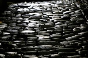 Cobblestone path by Budeltier