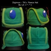 Digimon TK's Hat by LiliNeko