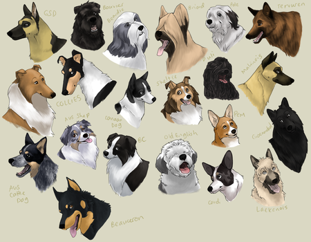 dog icons - HERDING GROUP by swift-whippet