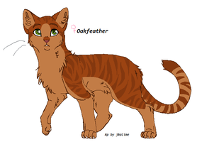 Oakpaw,feather Medicen cat by good-within-u