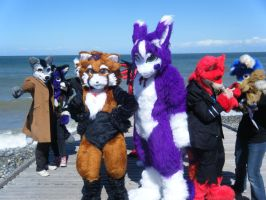 Fur Meet 2013 -  EVIL YOUR RUINING THE MAGIC by InsaneSpyro