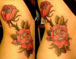 roses by dannygarcia