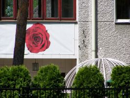 shapes / roses are red by Croiea
