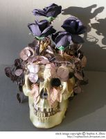 stock 809: Halloween skull 1 by sophiaastock