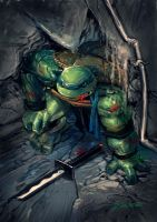 NINJA TURTLE 2 by redcode77