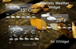 Realistic Weather Widget for xwidget by jimking