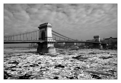 The Chain Bridge by hungarians