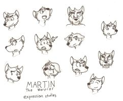 Martin Expressions by Gardboyz-Productions
