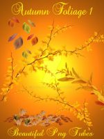 Autumn foliage PNG Collection by kayshalady