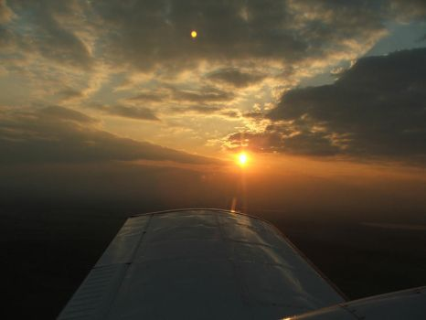 Sunset on the Wing by tammyins
