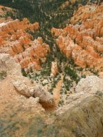 Looking Down Bryce Canyon by kkplum
