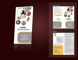 Hcg brochure by chetanpatel980