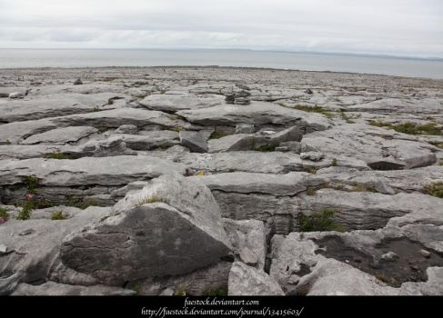 The Burren11 by faestock