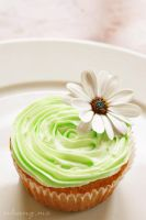 Flower cupcake by camnhungth