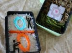Co-Op Mode: Portal Anniversary Bento by mindfire3927