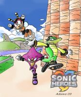 Team Chaotix by adamis