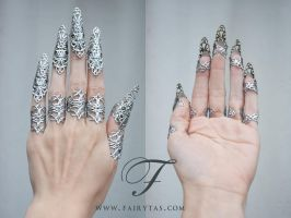 Silver Claws by Jolien-Rosanne