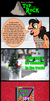 Top of the Rock #2: Crappy Gifts by TheRockinStallion