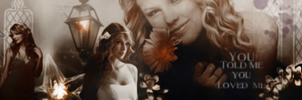 Taylor Swift banner by VaL-DeViAnT