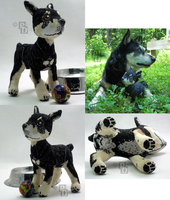 My Dog 3D Cross Stitch by rhaben