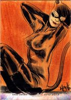 Women of Legend 41: Catwoman by RobertHack