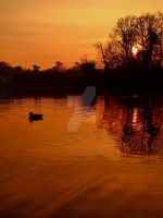 Sunset reflections 7 by melrissbrook