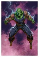 Piccolo by Valzonline