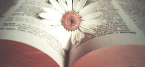Flowering book by rachel93