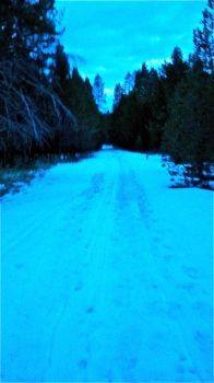 Snow Path V2 by hatikvah92