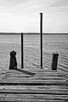 One foot off the dock. by fatinhasphotography