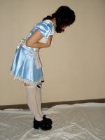 Alice in Wonderland 2 by MajesticStock