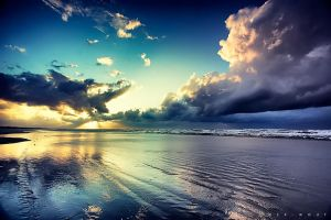 Radiant and Cool by Oer-Wout