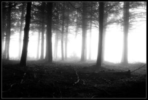 Eerie by FlorentCourty