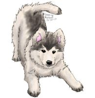 Wolf Pup by CountryGirl11