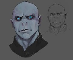 Voldemort by wolf166