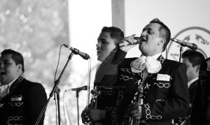los mariachis by rosco-the-third