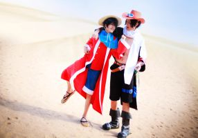 one piece_luffy and ace by deicn911