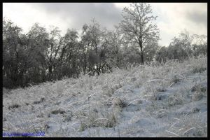 Icicle Hill by Nariane