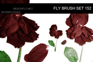butterfly-stock_brush set 152 by butterfly-stock