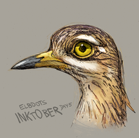 Inktober Spotted Thick-Knee by elbdot