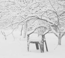 Enjoy the winter solitude... by aloner777