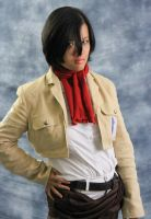 Mikasa 13 by Angelic-Obscura