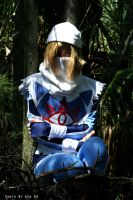 De Sota 2009: Sheik by stillreflection