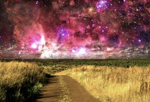 Little Field Pathway in Space by 2nnt