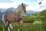 Pasofinocomp by Death-On-Two-Legs