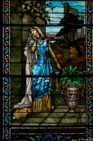 Lambert Castle Stained Glass by wmandra