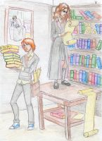 Ron and Hermione by Dinoralp