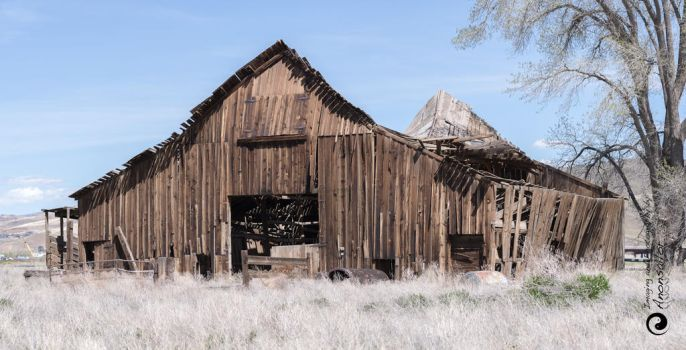 The Ranch, Sparks, Nevada... by aakoran