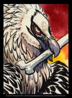 Bearded Vulture ATC by LittleGrayTiger